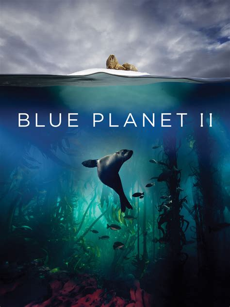 Blue Planet II TV Show: News, Videos, Full Episodes and