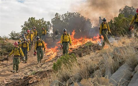 Why are wildfires getting worse?